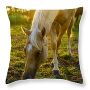 Grazing At Sunset Throw Pillow