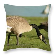The Canadian Throw Pillow