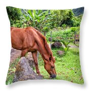 Grazing In Paradise Throw Pillow