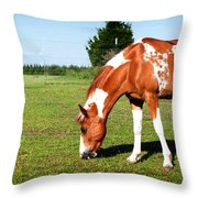 Grazing In Style Throw Pillow