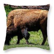 Grazing In The Grass Throw Pillow