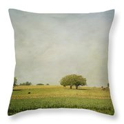 Grazing Throw Pillow by Kim Hojnacki