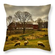 Grazing North South East And West Throw Pillow