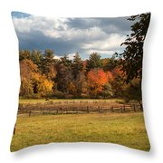 Grazing On The Farm Throw Pillow by Joann Vitali