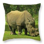 Grazing Rhino Throw Pillow