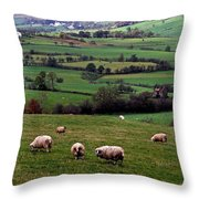 Grazing Sheep In Green Fields Throw Pillow