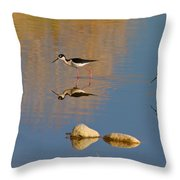 Grazing Stilts Throw Pillow