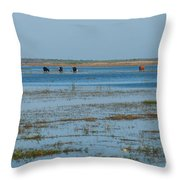 Grazing The River Throw Pillow