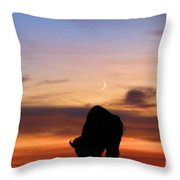 Grazing Under The Moon Throw Pillow