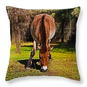 Grazing With An Attitude Throw Pillow