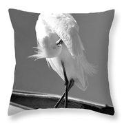 Great Beautiful Egret Throw Pillow