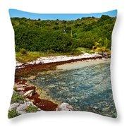 Great Bird Island Beach Throw Pillow
