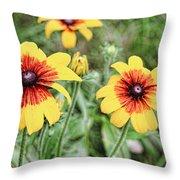 Great Blanket Flower Gaillardia Throw Pillow