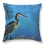 Great Blue Along The Canal Throw Pillow
