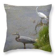 Great Blue And White Egrets Throw Pillow