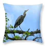 Great Blue Heron Afternoon Fishing  Throw Pillow