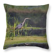 Great Blue Heron At Down East Maine Wetland Throw Pillow