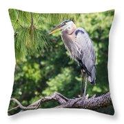 Great Blue Heron I Throw Pillow