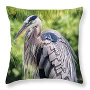 Great Blue Heron Iv Throw Pillow
