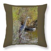 Great Blue Heron - Juvenile Throw Pillow