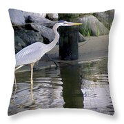 Great Blue Heron - Mealtime Throw Pillow