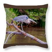Great Blue Heron Oak Creek Canyon Sedona Arizona Throw Pillow