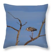 Great Blue Heron Perched On Branch Throw Pillow