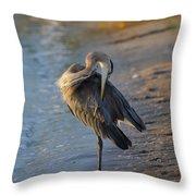 Great Blue Heron Preening On The Beach Throw Pillow