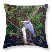 Great Blue Heron Resting Throw Pillow