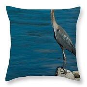 Great Blue Heron Throw Pillow