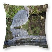 Great Blue Heron Standing In Water Throw Pillow