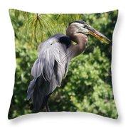 Great Blue Heron Vii Throw Pillow