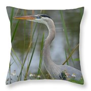 Great Blue In The Reeds Throw Pillow
