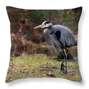 Great Blue On The Clinch River IIi Throw Pillow