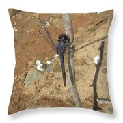 Slaty Skimmer Dragonfly Shadow Throw Pillow