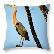 Great Blue Sunset Throw Pillow