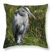 Great Blue Waiting For Prey Throw Pillow