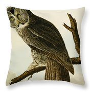 Great Cinereous Owl Throw Pillow
