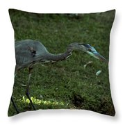 Great Concentration Throw Pillow by Sean Green