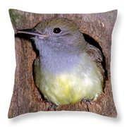 Great Crested Flycatcher In Nest Cavity Throw Pillow