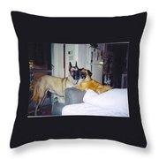 Great Dane And Australian Shepardd Throw Pillow
