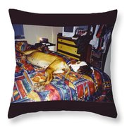 Great Dane And Cat Throw Pillow