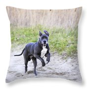 Great Dane Throw Pillow