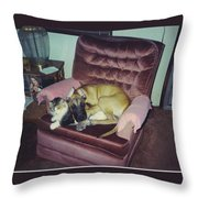 Great Dane Pup And Cat Throw Pillow