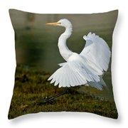 Great Egret Alighting Throw Pillow