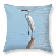 Great Egret And Reflection Throw Pillow