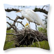 Great Egret Chicks - Sibling Rivalry Throw Pillow by Carol Groenen