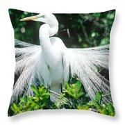 Great Egret Displaying Breeding Plumage Throw Pillow