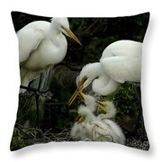 Great Egret Family 2 Throw Pillow