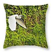 Great Egret Flying Over Rapti River In Chitwan Np-nepal Throw Pillow